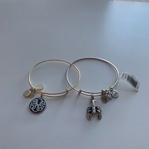 2 ALEX & ANI Energy Lobster Wire Bangle Bracelets